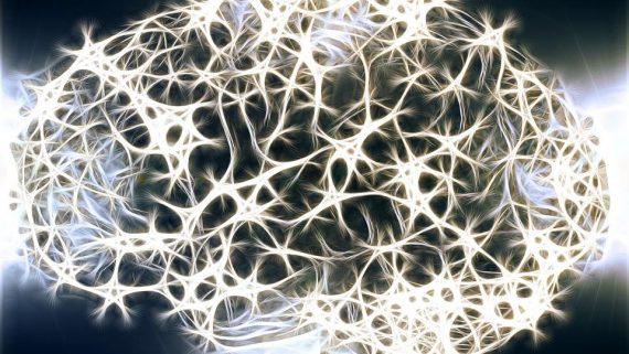 Gli studenti del Master internazionale in neuroscienze a lezione con le industrie