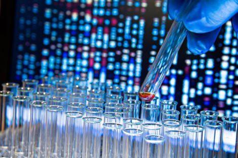 Parte TRAIN, progetto transfrontaliero di Biomedicina e Bioinformatica