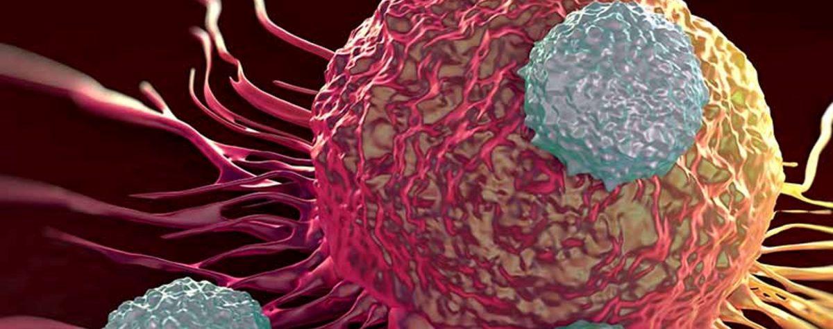 CATHENA il progetto per la nanomedicina personalizzata contro il cancro