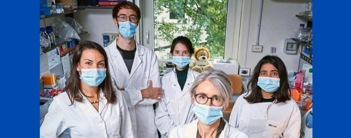 Un team dell'ICGEB evidenzia il ruolo dei recettori cellulari nell'immunoterapia del cancro