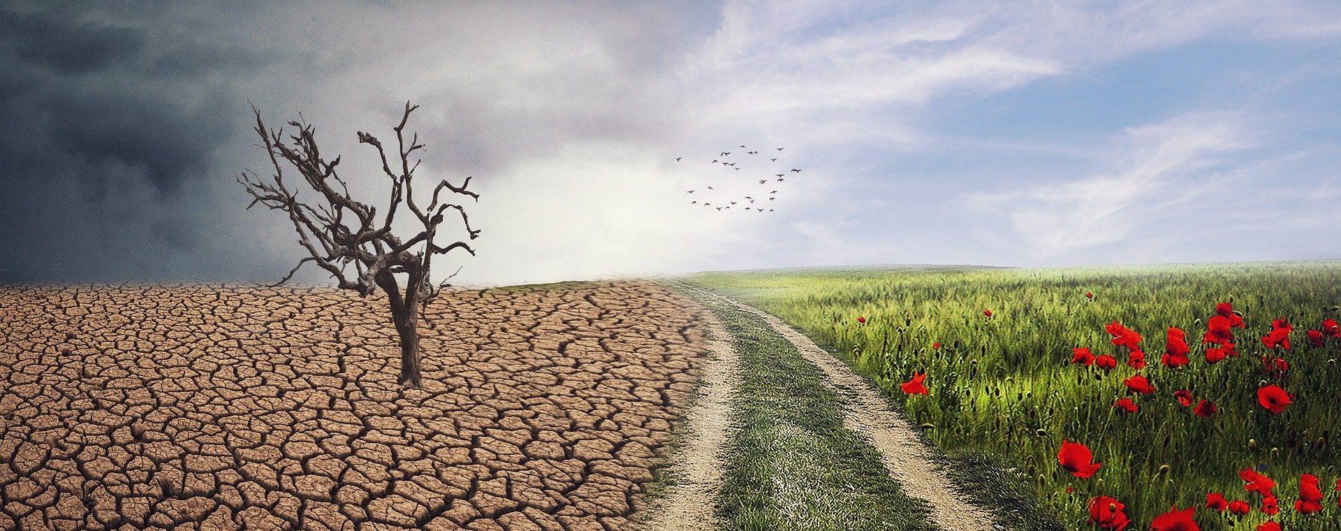 Piani d'Azione per l'Energia Sostenibile e il Clima (PAESC): metodi pratici per la redazione dell'inventario delle emissioni e la valutazione delle vulnerabilità climatiche
