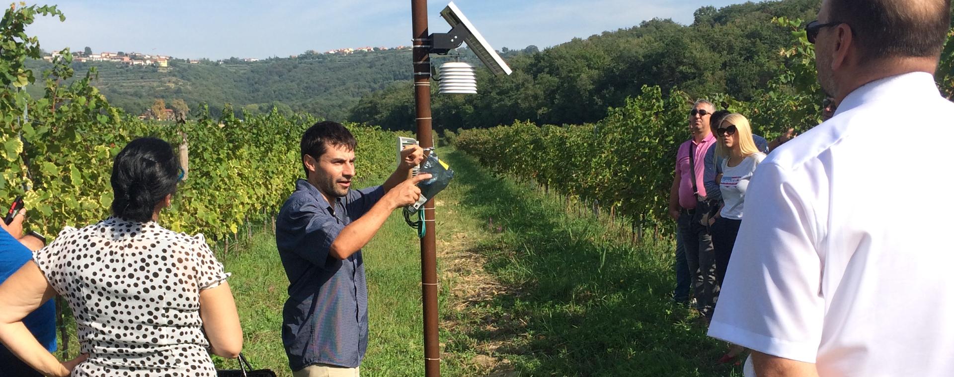 Tecnologie ICT in viticoltura: SUSGRAPE presentato ai Paesi dei Balcani sud-orientali