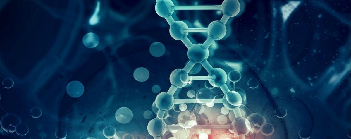 Osservatorio genomica: evidenze e risultati del primo anno di attività
