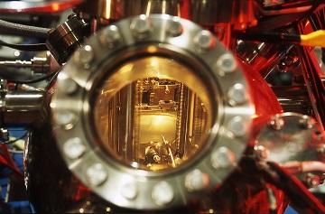 SOS Alluminio: scoperti i meccanismi di tossicità del metallo che limita la crescita delle piante