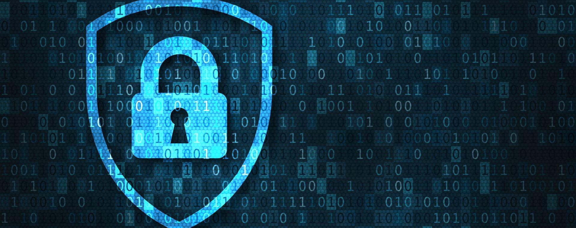 La nuova privacy: adempimenti e nuovi modelli di business nell'e-commerce